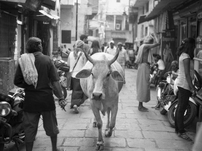 Un' idea dell' Inda
